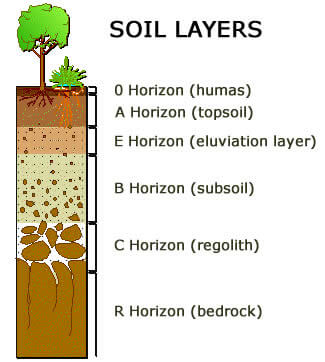 The soil layers for testing Walworth